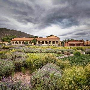 Bodega Colomé, Estancia, Visitor Center y Museo James Turrell