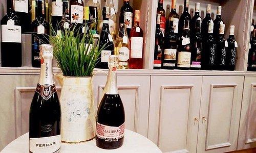 Nuestros vinos vienen de viñedos de Viejo y Nuevo mundo.