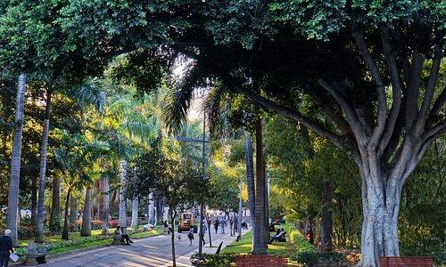 Один из парков