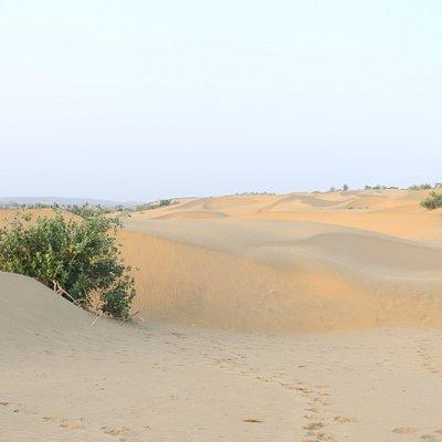 jaisalmer desert camel safari