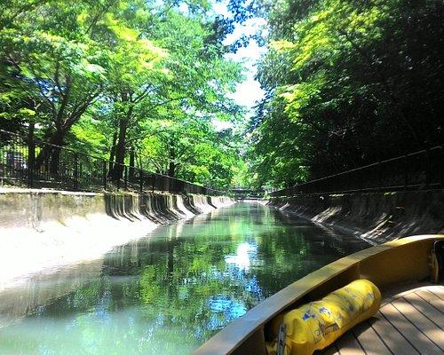 深緑の疏水を抜けるびわ湖疏水船