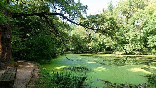Botanischer Park, Nett, sehr gepflegt.