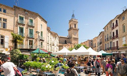 Pézenas - Marché.Photo par Comte