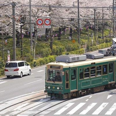 飛鳥山~王子駅前の周辺は桜がきれいです