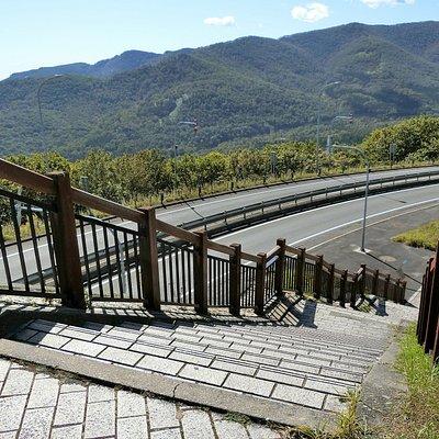 日勝峠展望台付近の樹海ロード