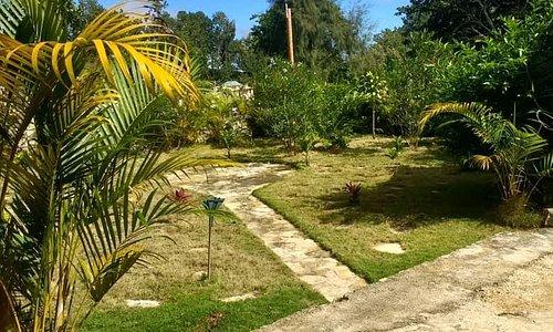 Une cour commune avec  une grande  terrasse avec une vue sur un  beau  jardin.
