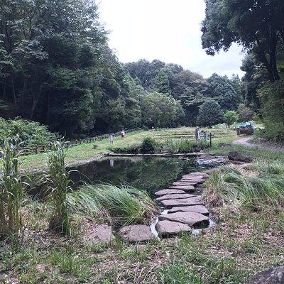小さな水田や池などがあります