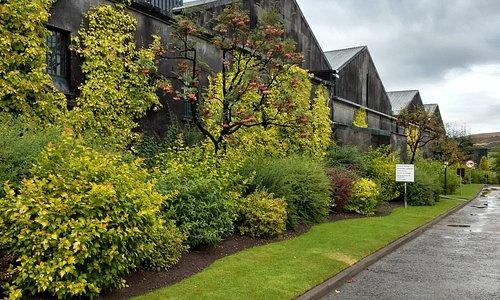 Distillery grounds