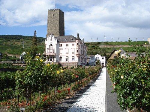 Boosenburg i Rüdesheim