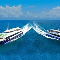 Seyferry - we are selling Cat Cocos and Cat Rose tickets at best prices, with personalized servi