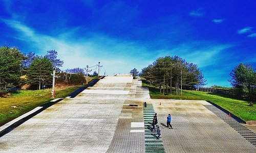 Ski slope within the park