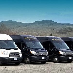 We have 9 Ford Transits seating 14 guests each ready to provide exceptional tour and shuttle ser