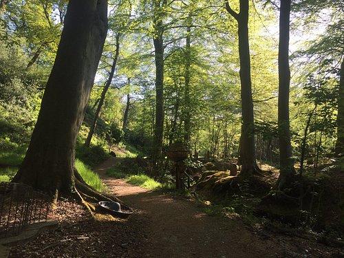 A stroll down the woodland arts trail