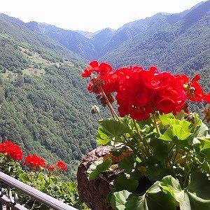 La Peppa Premana: vista sulla Valvarrone dal terrazzo.