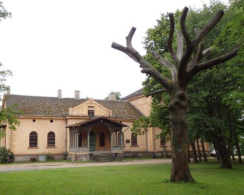 The World Tree (Ilmapuu) in front of the Viljandi Manor