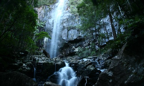 Protesters Falls at Terania Creek: landmark for the conservation of the Northern Rivers