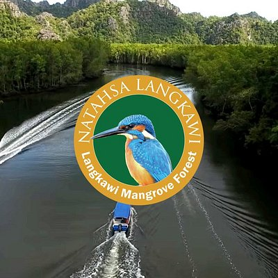 Learn about Langkawi Mangrove Forest. The first UNESCO Kilim Geoforest Park in Southeast Asia.