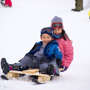 Snow sled building and testing in winter