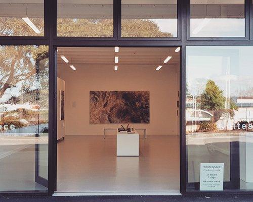David Ryan exhibition at Whitespace, 20 Monmouth St, Grey Lynn