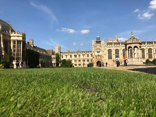 Il Trinity College visto dai ciuffi d'erba