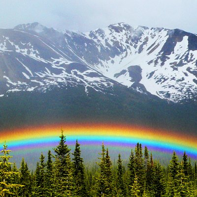 Fine local art of the Canadian Rockies.  Non-profit guild of passionate artists.