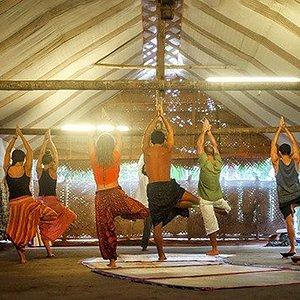 Morning yoga session in an eco friendly yoga studio