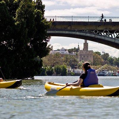 Tours kayak exclusivos por el río Guadalquivir