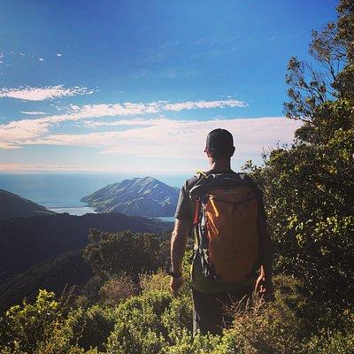 Cable Bay Adventure Park View