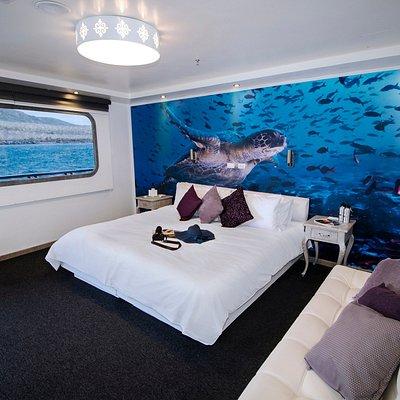 MT Camila matrimonial standard cabin a comfortable option Galapagos islands