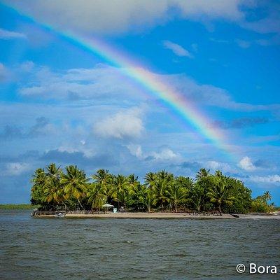 Ilha do Goio .Parada obrigatoria no paseio das ilhas