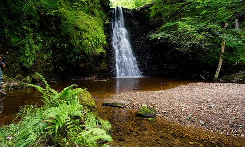 Falling Foss in the North York Moors National Park photo by Ebor Images