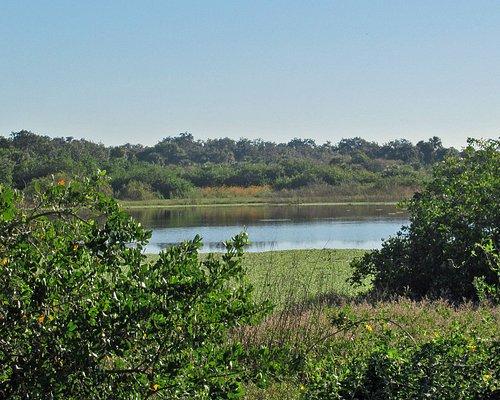 Pond at Charlotte Harbor Preserve