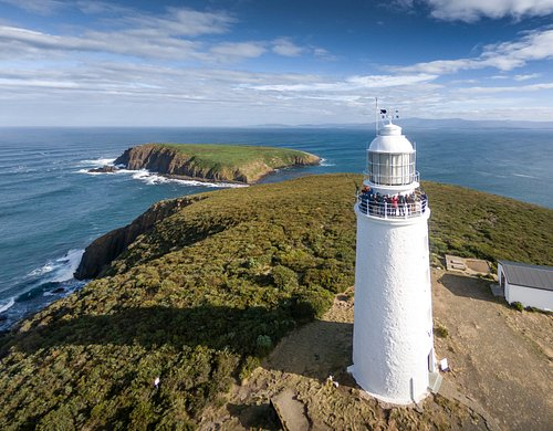 Your very own Cape Bruny Lighthouse Tour and Safari, with lunch and Bruny Island Oysters & Chees