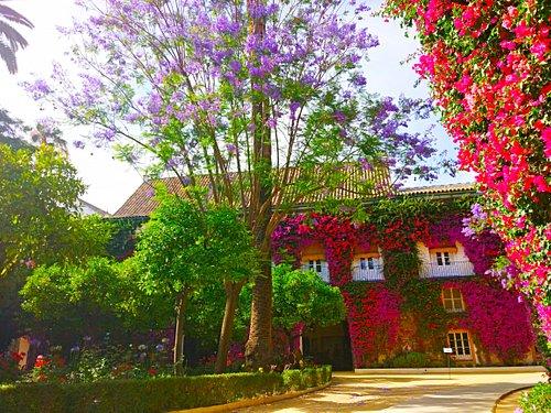 Fachada Palacio de Las Dueñas