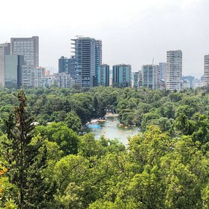 Views of the Park from Chapultepec Castle!