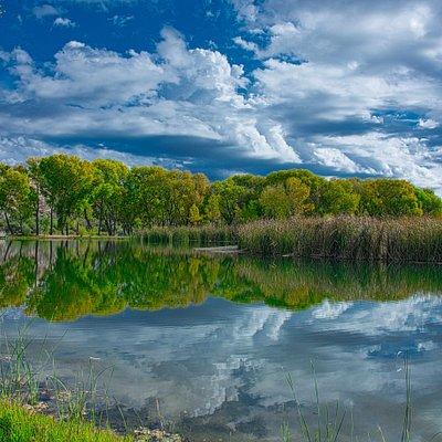 refletions at the lagoon