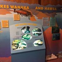 Mount Aspiring National Park Visitor Centre (6)