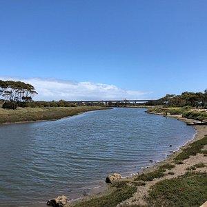 Onkaparinga River Wetlands