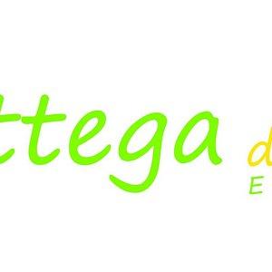 Nuovo Logo Bottega del Sole