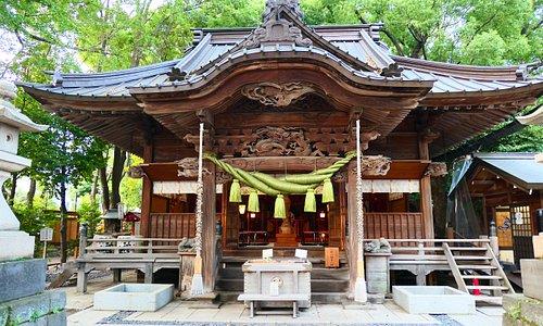 田無神社の社殿。 江戸期を代表する神社様式の社殿です。 注連縄の色が薄い緑色でした。珍しい色ですね。素敵です。