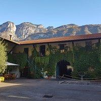 Azienda Foradori