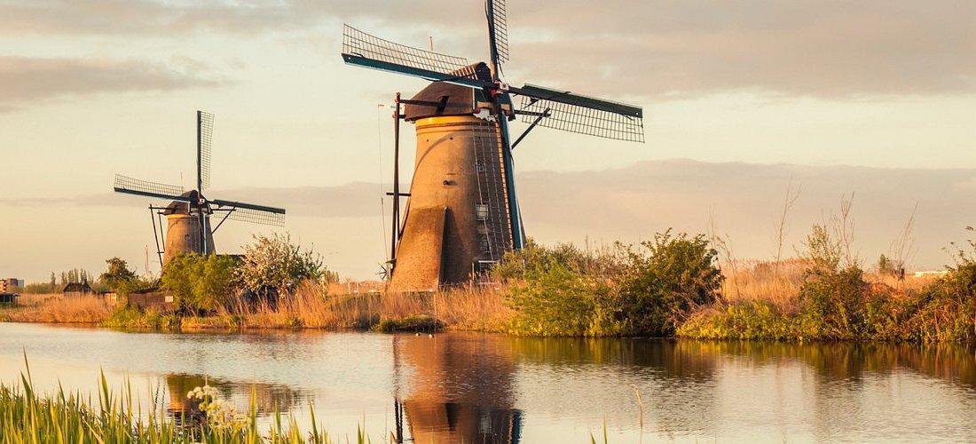 Em 2021 Holland