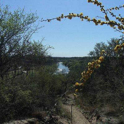 Foto de un sendero de nuestra reserva con el Rio Ctalamochita o Rio Tercero