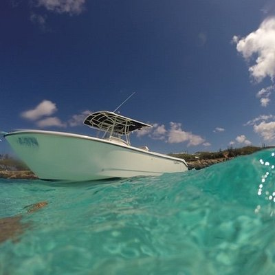 Edgewater 265cc. A Floating Fool....