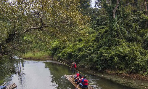 This adventure trail will take you cycling through the less traveled paths of Wayanad. You also get to explore the enchanting waterways of Wayanad in a bamboo raft. Be in sync with nature and explore your wild side with cycling and bamboo rafting in Wayanad. Follow the link to know more about the experience: https://goo.gl/g8aekD