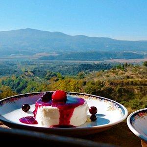 Panna cotta with wild berries