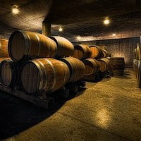 View the barrel cellar during a tour