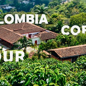 A fantastic tour that allows you to discover the magic of the Colombian coffee, seeing the process from the seed to the cup and tasting its magnificent and intense flavors.