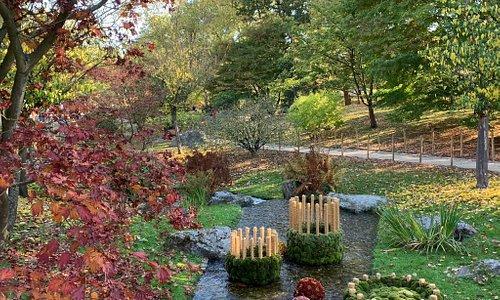 """Prachtige herfstkleuren Hele mooie tuin om rustig tot jezelf te komen. De tekst in het Japans klopt hellemaal """" Een moment, een actieviteit"""