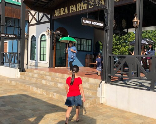 Aura Farm Train Station